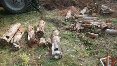 В Увельском районе нашли 17 авиабомб